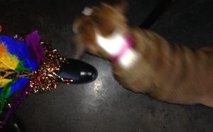 12 boot attack